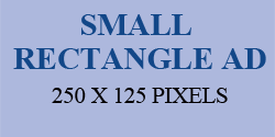 SMALL RECTANGLE AD SHAPE 250X125 PIXELS