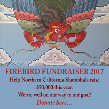 Firebird Fundraiser 2017 Click here to donate.