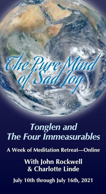 The Pure Mind of Sad Joy Summer Retreat